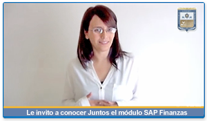 Curso SAP FI Introductorio