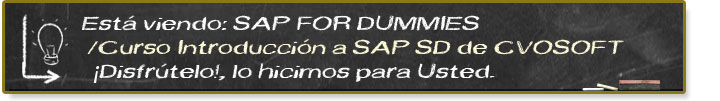Seminario Introduccion al Sistema SAP