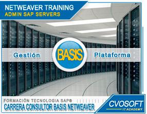 Conozca más sobre de la Carrera Administrador BASIS