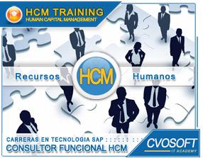 Carrera Consultor en SAP HCM