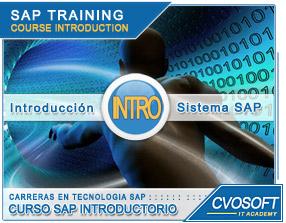 Curso Introducción SAP