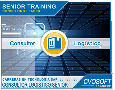 Carrera Consultor Senior en SAP MM