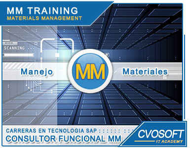Consultor Funcional SAP MM