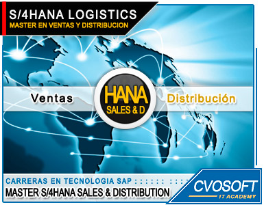 Master S/4HANA LOGISTIC Sales and Distribution