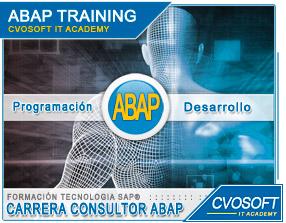 Conozca más sobre de la Carrera Programador ABAP