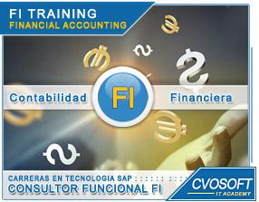 Conozca más sobre de la Carrera Consultor en SAP FI