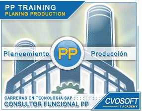 Conozca más sobre de la Carrera Consultor en SAP PP