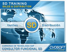 Conozca más sobre de la Carrera Consultor en SAP SD