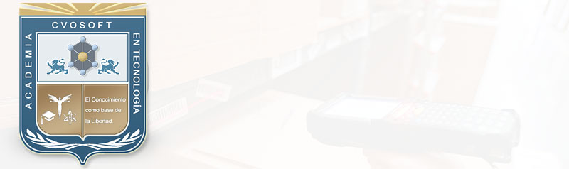Carrera Consultor Funcional MM