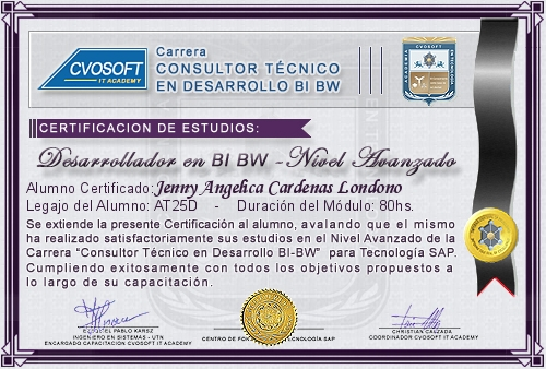 Certificación de estudios en Consultor BI / BW BO Nivel Avanzado