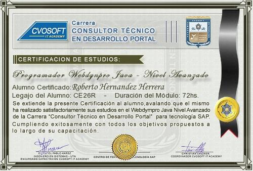 Certificación de estudios en Programador WebDynpro JAVA Nivel Avanzado