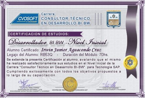 Certificación de estudios en Consultor BI / BW BO Nivel Inicial