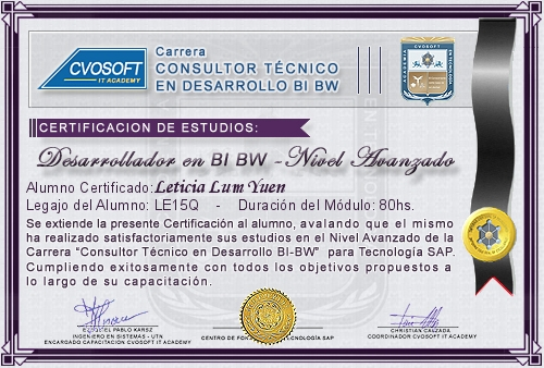 Certificación de estudios en Desarrollador BI BW Nivel Avanzado