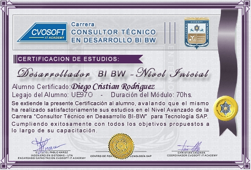 Certificación de estudios en Desarrollador BI BW Nivel Inicial