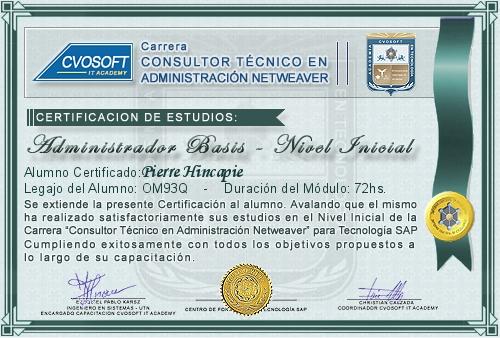 Certificación de estudios en Consultor BASIS Nivel Inicial