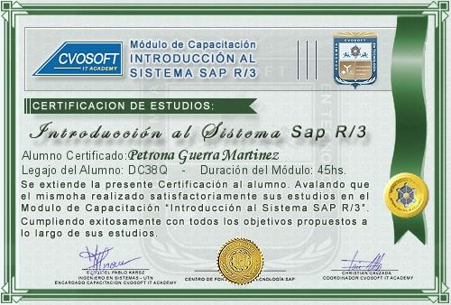 Certificación de estudios en Introducción a SAP