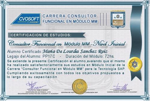 Certificación de estudios en Consultor Funcional Módulo MM Nivel Inicial