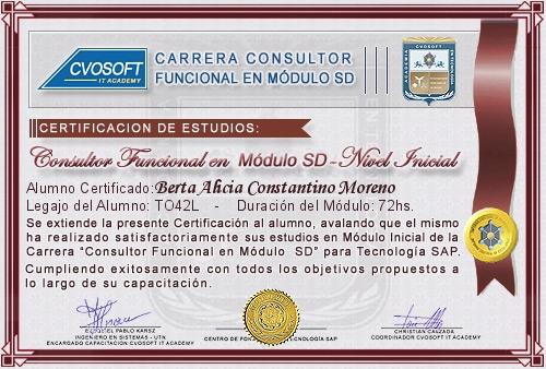 Certificación de estudios en Consultor Funcional Módulo SD Nivel Inicial