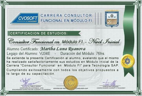 Certificación de estudios en Consultor Funcional Módulo FI Nivel Inicial