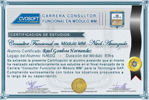 Certificación de estudios en Consultor Funcional Módulo MM Nivel Avanzado