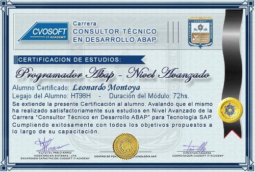 Certificación de estudios en Programador ABAP Nivel Avanzado