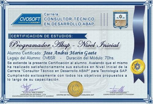 Certificación de estudios en Consultor ABAP Nivel Inicial