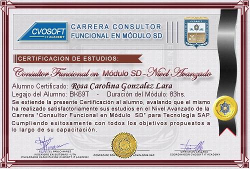 Certificación de estudios en Consultor Funcional Módulo SD Nivel Avanzado